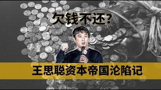 欠的不是1.5亿而是20亿,王思聪濒临破产其实另有隐情,揭秘国民老公背后的资本故事