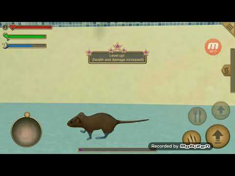 Juegos de ratones Mouse Simulator
