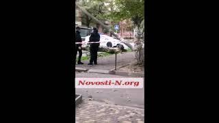 В Николаеве дерево упало на автомобиль, оборвало провода и повалило несколько электроопор. ВИДЕО