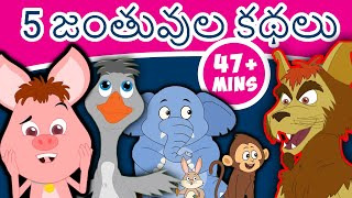 5 జంతువుల కథలు 5 Animal Stories | Fairy Tales in Telugu | Telugu Stories,Telugu Fairy Tales