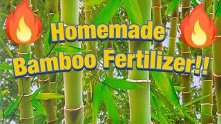 HOW TO Fertilize bamboo??