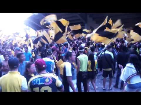 """PREVIA AVALANCHASUR1997"" Barra: Avalancha Sur • Club: Deportivo Táchira"