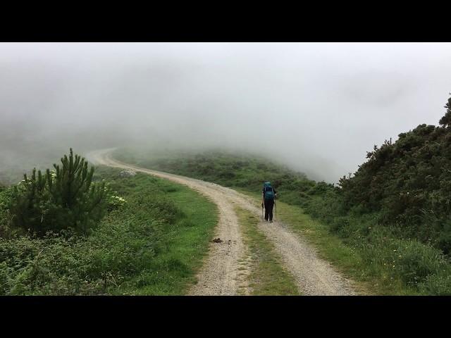 Weg im Nebel