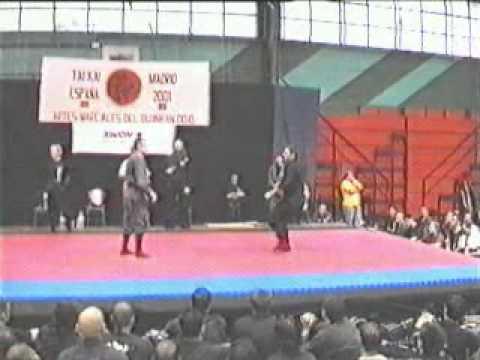 ~ Free Watch Bujinkan Dojo Taijitsu: Taikai 2001, Madrid