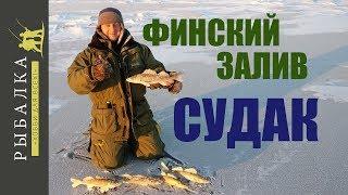 Отчеты о рыбалки на финском заливе