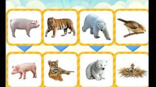 Познаем мир животных (развивающие мультики)