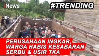 Ratusan Warga di Kalimantan Barat Usir Tenaga Kerja Asing - iNews Pagi 19/09