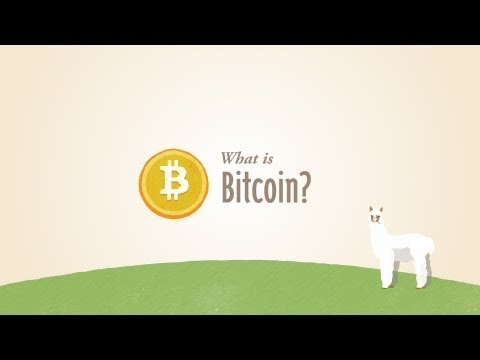 What is Bitcoin? (v1)