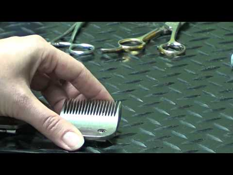 Pet Grooming Hand Tools for the Do-It-Yourself Dog Groomer