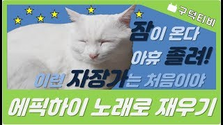 [구덕TV] 에픽하이(Lullaby for a cat)을 들은 고양이 / Cat listening to the 'Lullaby for a cat'(Epik high)