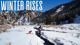 Winter Rises - Fishing Big Dry Flies in January