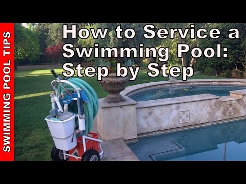 How to Maintain and Service A Swimming Pool: A Step By Step Guide