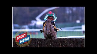 Grand National Tips: Vieux Lion Rouge Can End David Pipe Nightmare