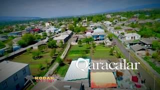 Qaracalar TOYU & Altun & Sevilya    2018