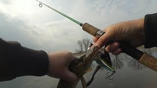 Рыбалка на кубани кто где был