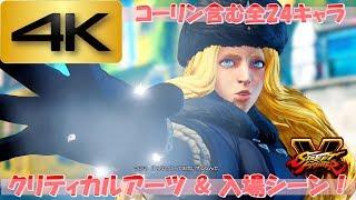【PS4】ストリートファイターV -全24キャラ入場、クリティカルアーツ集ー ≪4K対応≫