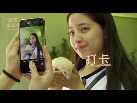 【閨蜜愛旅行完整版】歐陽妮妮 & 歐陽娣娣|韓國大邱 姊妹心願清單