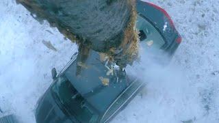 儿子惨死街头,大爷驾驶砍树机,把一棵树插进仇人汽车