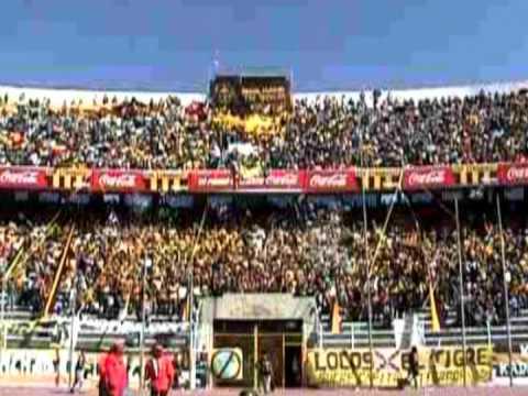 """Recibimiento.mpg"" Barra: La Gloriosa Ultra Sur 34 • Club: The Strongest"