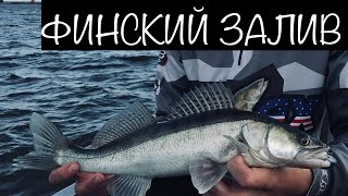 Отчеты о рыбалки с финского залива