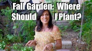 Fall Vegetable Garden: Help Me Choose Where To Plant / Fall Garden Series #2