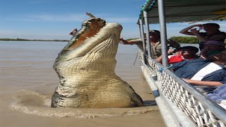 10 Abnormally Large Animals That Really Exist