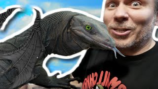 GIANT LIZARDS!! TRAINING REAL LIFE DRAGONS!!! | BRIAN BARCZYK