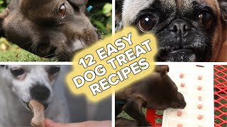 12 Easy Recipes For Your Dog