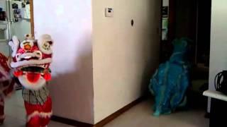 Lil kids Dragon dance wichita ks