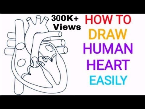 Draw Heart Easily And Quickly Smotret Onlajn Na Hah Life
