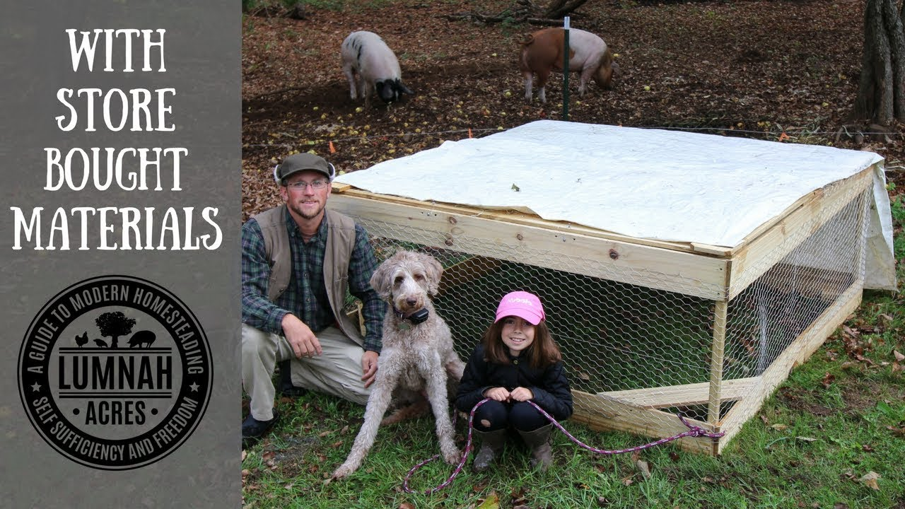 Build Your Own $30 Chicken Coop in 30 Minutes