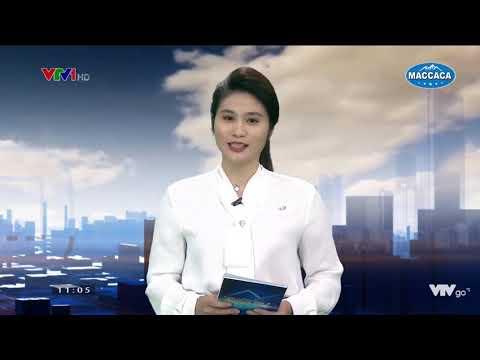 Maccaca - Dự án Phát triển vùng nguyên liệu - VTV1 - Thời sự 20/4/2019