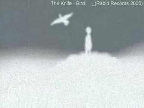Música Bird