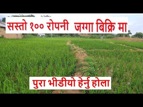 100 ropani land for sale in makwanpur hetuda | real estate nepal | sasto jagga | ghar jagga nepal