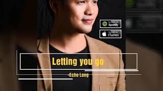 Echo Lang - Letting you go (Lyric Video)