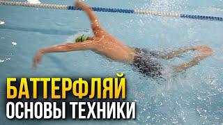 Как плавать баттерфляем? Самое важное в технике баттерфляй