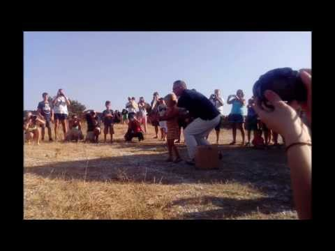 0 Healed wild birds release in Antiparos   Thursday, 08/08/2013