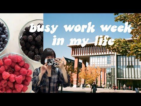 busy work week at Doshisha vlog// online class, part time job, study session/ 同志社大学生の1週間