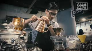 Upnormal Coffee Roaster | V60 Brewing Process