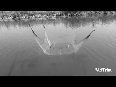 Comprare una verga per inverno pescando in una balalaica
