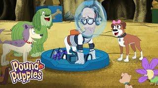 Pound Puppies Season 3 -