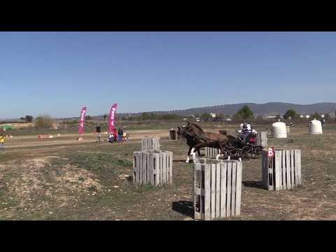 I Fase Cto Navarro Enganches Obstáculos 240319 Video 1