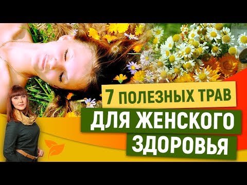 7 полезных трав для женского здоровья. Травничество с Алорией Собиновой
