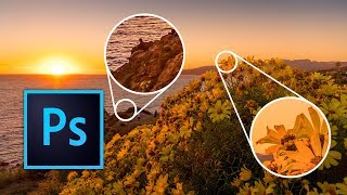 Beginner tutorial: Focus Stacking in Photoshop CC 2019