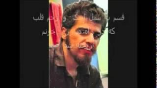 شاهین نجفی اینبار برای صانع ژاله خواند