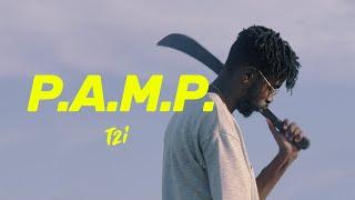 T2i / P.A.M.P. (clip)