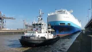 preview picture of video 'Car Carrier A LADYBUG in Bremerhaven'