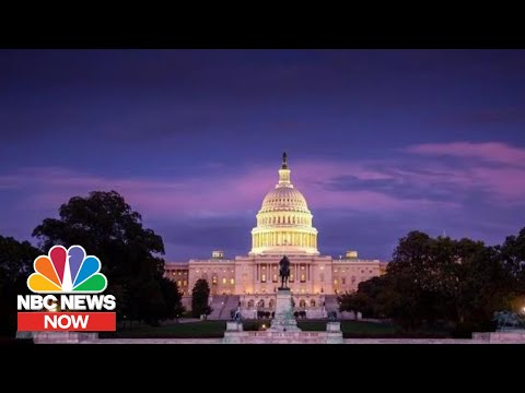 Qassem Soleimani Strike: What War Powers Does The President Have?   NBC News NOW
