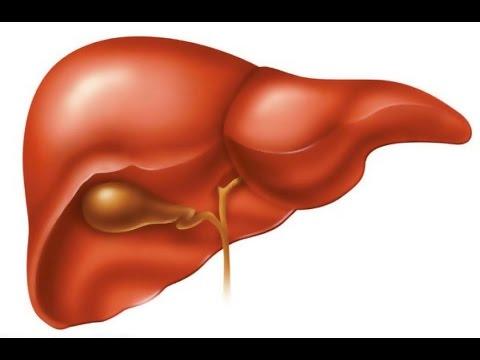Как можно вылечить гепатит в и с одновременно