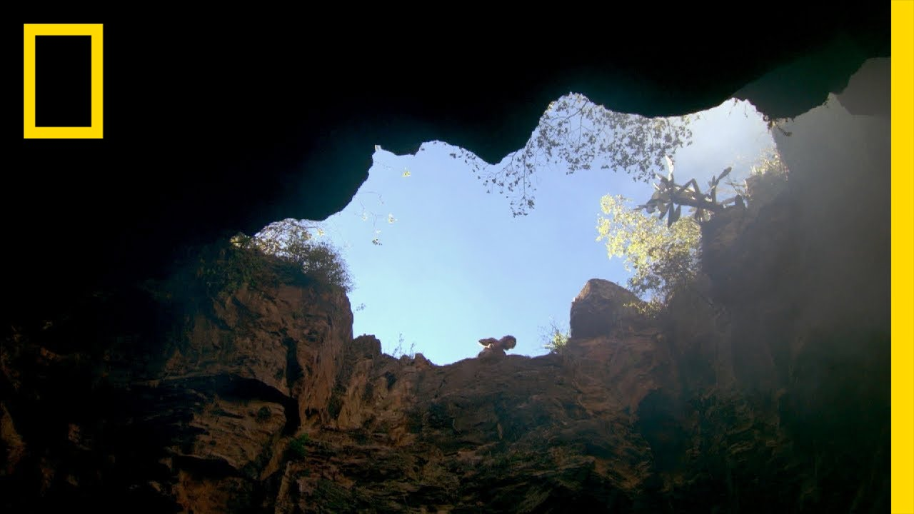 Hominid Death Trap | National Geographic thumbnail